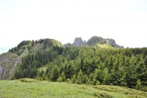 PNC-Traseu-3-Poiana-Maicilor04